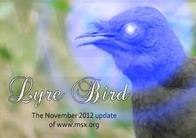 MRC2k12 - Lyre Bird