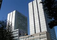 The Aoyama Twin, close to the hotel